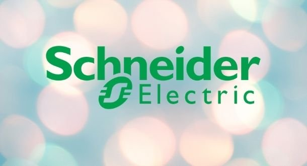 12 DoS and remote code execution vulnerabilities in Schneider PowerLogic EGX100 and PowerLogicEGX300 power monitoring devices